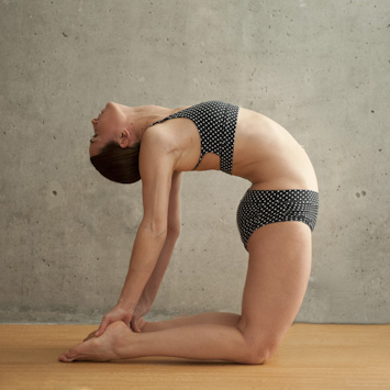 Yoga Poses : Hot Yoga 101 | Vancouver's Original Hot Yoga Since 1999